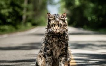 Pet Sematary: il secondo trailer del nuovo adattamento