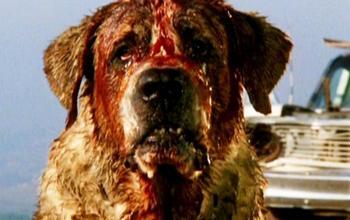 Bad Dog: Lionsgate ha acquisito i diritti della commedia horror