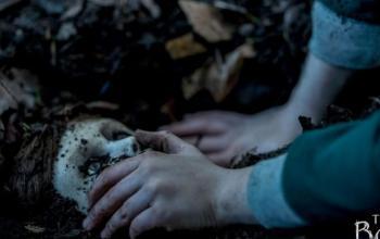 The Boy – La maledizione di Brahms: il trailer e il poster italiani