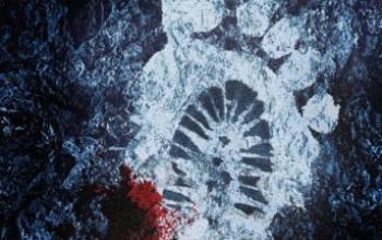 """Mondadori presenta: """"Il massacro del Monte Rainier"""""""