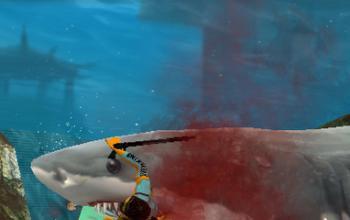 Dalla parte dello squalo