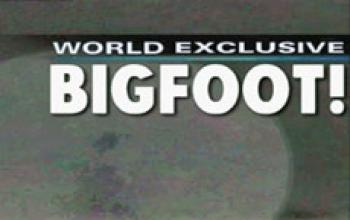 Bigfoot dal vero! Video diffuso dalla TV americana