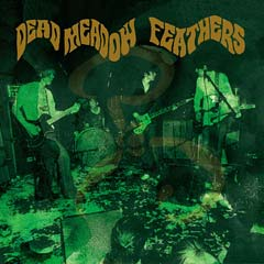 La cover del cd Feathers