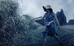 Nell'erba alta: pubblicato il trailer ufficiale in italiano