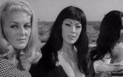 Faster, Pussycat! Kill! Kill!: il film di Russ Meyer diventa una serie tv