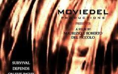 Intervista a Maurizio e Roberto Del Piccolo (The Hounds)