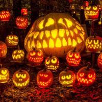 10 libri per la notte di Halloween