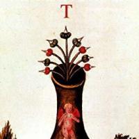 """Disponibile """"T"""", il nuovo romanzo di Alessandro Forlani"""