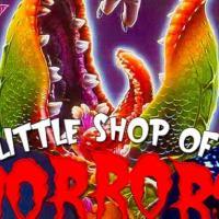 La piccola bottega degli orrori: le riprese del remake inizieranno questa estate