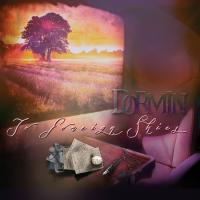 Dormin il secondo album To Foreign Skies