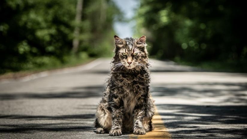 Pet Sematary: il luogo da cui tornano i morti TRAILER